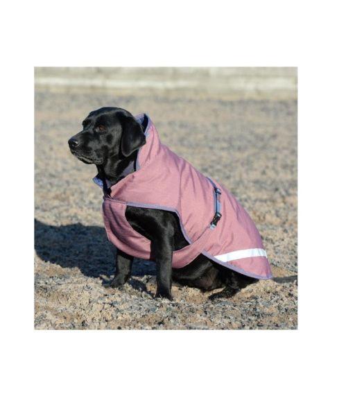 Bucas Freedom Hundedecke 50